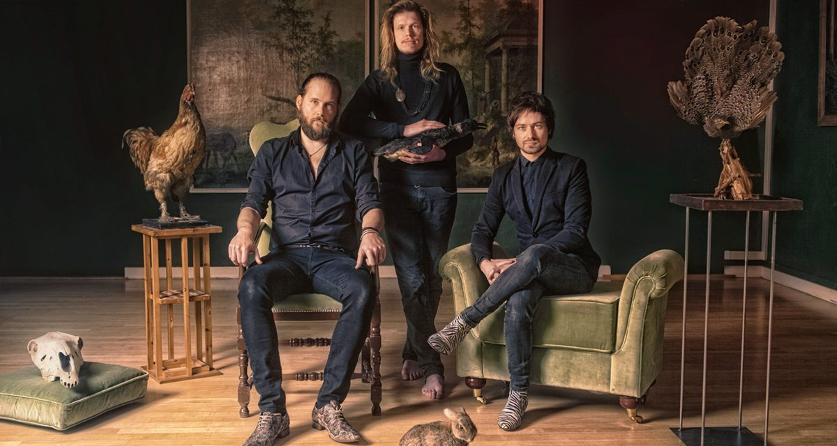 Melodic rock from Certain Animals with new single 'TV'